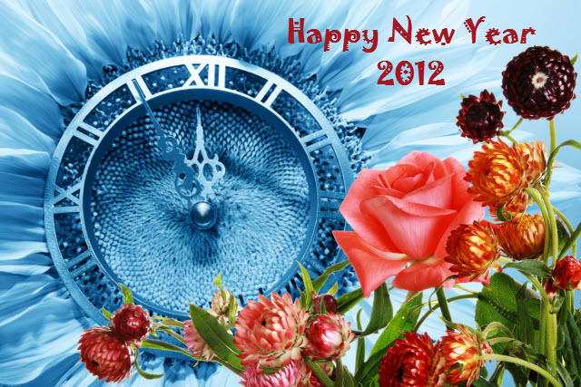 Happy New Year 2012 from SEO Tampa Happy New Year 2012!