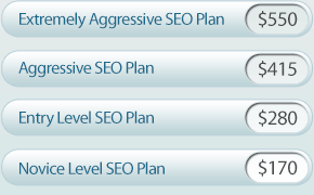seoplans Affordable SEO Company Raise Prices on SEO Optimization packages