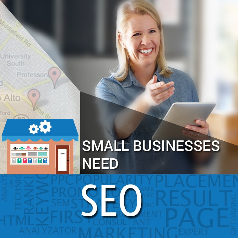 Small Businesses Need SEO
