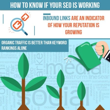 How do I know if my SEO Works